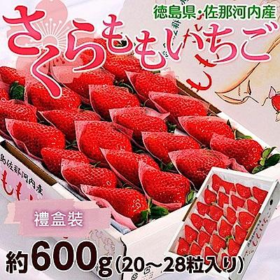 【天天果園】日本德島櫻桃草莓禮盒裝600g±10%(約20~24入)