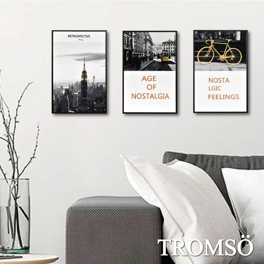 TROMSO 北歐生活版畫有框畫-金采都會WA98(三幅一組)