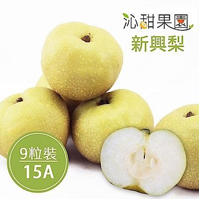 沁甜果園SSN 苗栗卓蘭新興梨(15A,9粒裝)