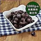 幸美生技-進口冷凍凍莓果5包組-(種類任選)(1000g/包)