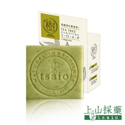 tsaio上山採藥 茶樹淨化果油皂 120g