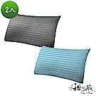 精靈工廠 奈米銀離子 4D超涼感透氣抑菌枕2入