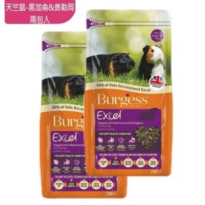 英國伯爵Burgess 天竺鼠飼料-黑加侖&奧勒岡葉 2KG-兩包入