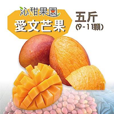 沁甜果園SSN 屏東枋山愛文芒果(9-11粒裝/5台斤)