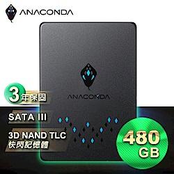 ANACOMDA巨蟒 TS 480GB 固態硬碟