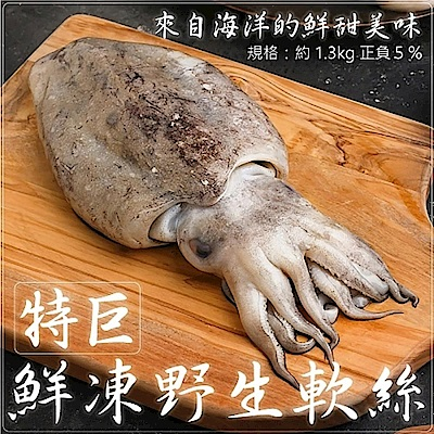 【海陸管家】鮮凍野生手背大軟絲(每隻約1.2kg-1.4kg) x1隻