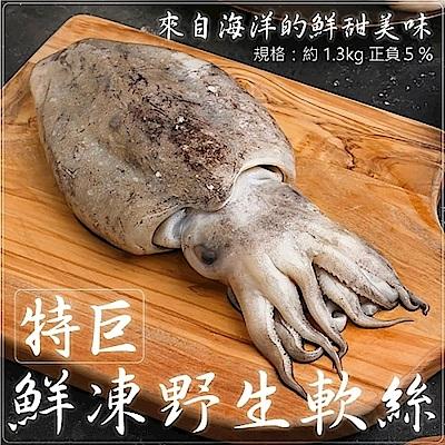 (滿699免運)【海陸管家】鮮凍野生手背大軟絲(每隻約1.2kg-1.4kg) x1隻