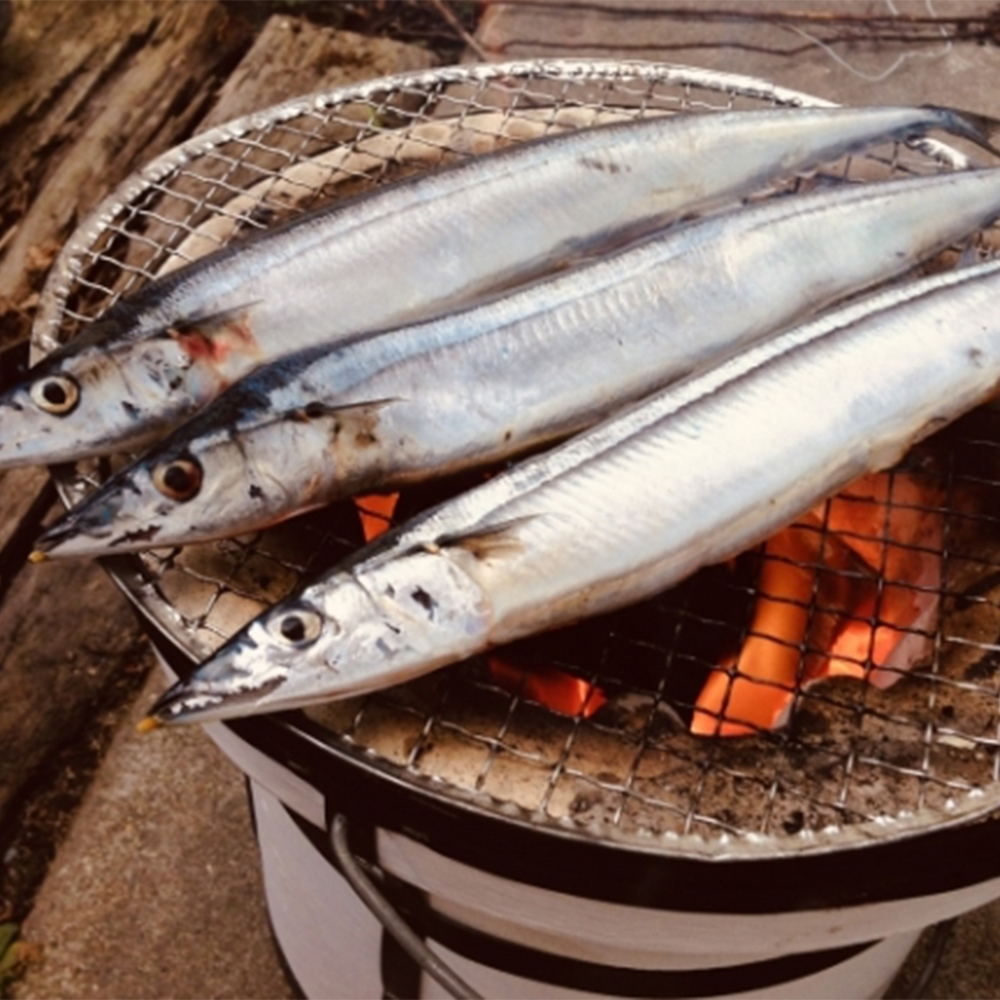 (滿899免運)【上野物產】極品嚴選肥美秋刀魚 ( 600g土10%/包 ) *1包