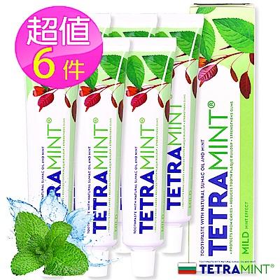 歐洲原裝TETRAMINT強效薄荷潔白牙膏65ml六入