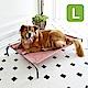 Crazypaws瘋狂爪子 K.1寵物傢俱 奧蘭多公爵-L號-獨特防側翻腳架設計寵物行軍床