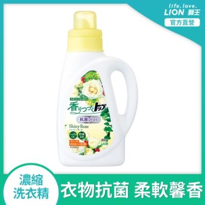 日本獅王LION 香氛柔軟濃縮洗衣精 抗菌白玫瑰 850g