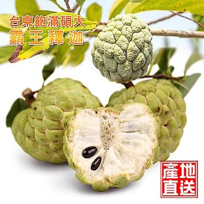 水果達人 台東飽滿碩大霸王釋迦-2箱(8顆/箱)