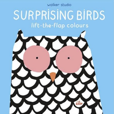 Surprising Birds:Lift-The-Flap Colours 精裝翻翻書