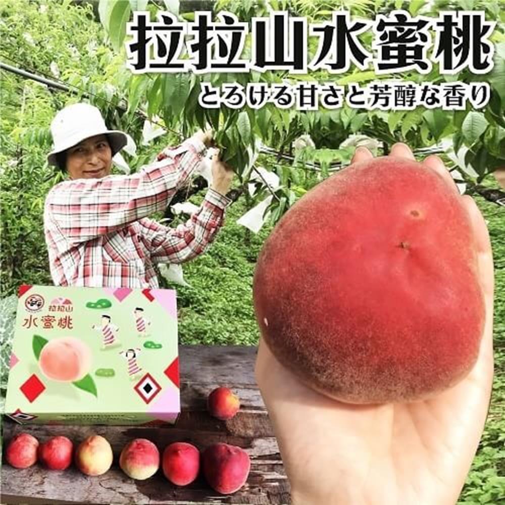 【天天果園】拉拉山五月水蜜桃(媽媽桃)12粒1盒(每盒約2.5斤)