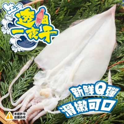 (任選)生凍透抽一夜干(100-150g)
