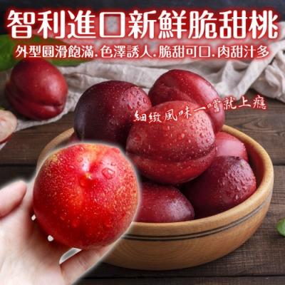 【天天果園】智利進口新鮮脆甜桃10顆禮盒(每顆約120g)