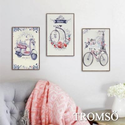TROMSO北歐生活版畫有框畫-旅行花都WA100(三幅一組)