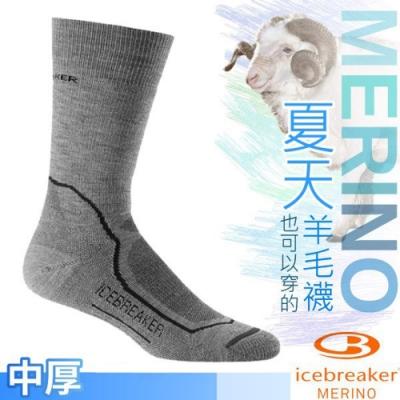 Icebreaker 男款 美麗諾羊毛 Hike+ 中筒中毛圈健行襪(2入)_都市灰