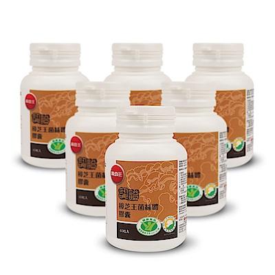 【葡萄王】認證樟芝王60粒X6瓶 (國家護肝與調節血壓雙效健康食品認證)