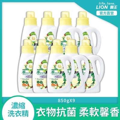 (箱購)日本獅王LION 香氛柔軟濃縮洗衣精 抗菌白玫瑰 850gx9
