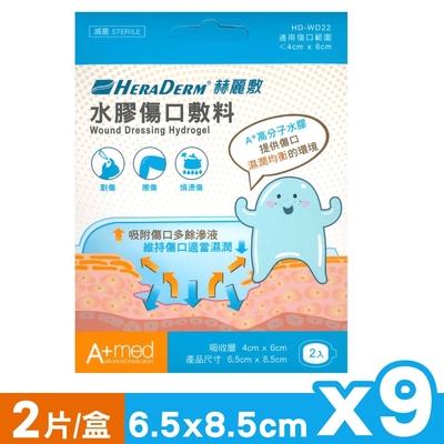 赫麗敷 HERADERM 水膠傷口敷料 6.5X8.5cm (2片X9盒)