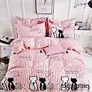 BEDDING-活性印染3.5尺單人薄床包涼被組-貓咪凱特