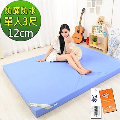LooCa 抗菌防蹣防水12cm釋壓記憶床墊 單人