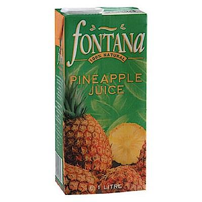 Fontana 100%鳳梨汁(1000mlx12入)