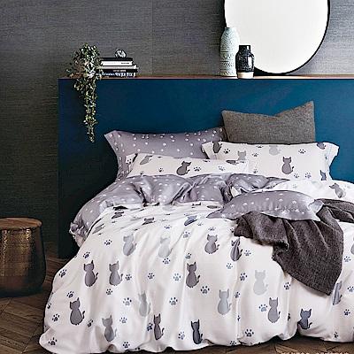 DESMOND岱思夢 加大100%天絲床包枕套三件組 仰星星