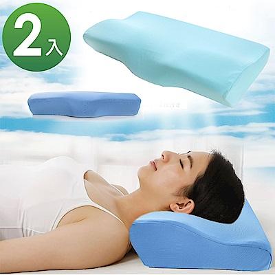 (團購2入)ANDYMAY2 3D涼爽透氣舒壓曲線機能枕-大尺寸