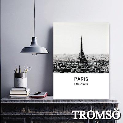 TROMSO 時尚無框畫-風尚巴黎 W273