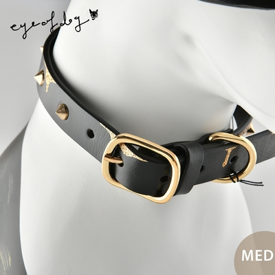 澳洲eye of dog 手繪皮革項圈 寵物項圈 狗項圈 金色鑲邊+鉚釘 MED