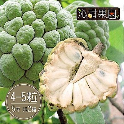 沁甜果園SSN 台東大目釋迦(4-5顆裝/5台斤)(共2箱)