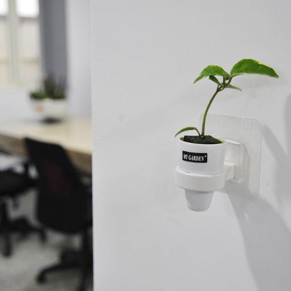My Garden療癒壁貼式植物容器/水耕植物杯3入-DY522