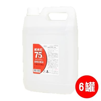 威肯尼 75%酒精(乙醇)消毒液-4000mlx6罐