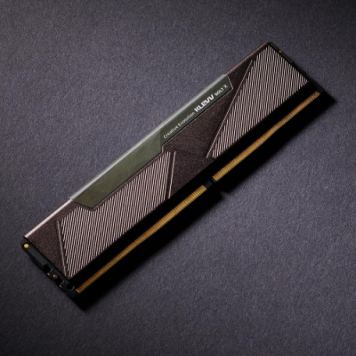 KLEVV 科賦 BOLT X  DDR4 2666 8G 桌上型記憶體(雷霆系列)