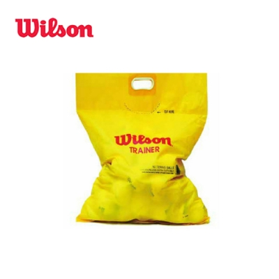 WILSON TRAINER 無壓練習球(60顆/袋) WRT132200