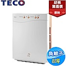 結帳驚喜價!TECO東元 8坪 負離子空氣清淨機 NN2001BD