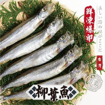 顧三頓-台灣生凍柳葉魚x4盒(每盒800g±10%)