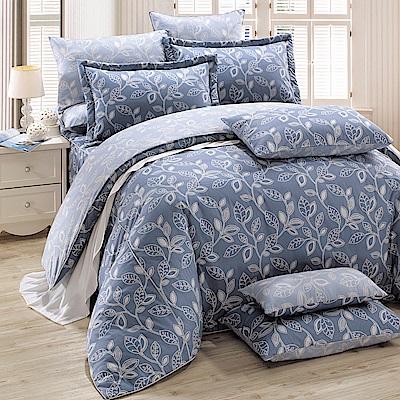 鴻宇 100%精梳棉 奧德曼 藍 雙人七件式兩用被床罩組