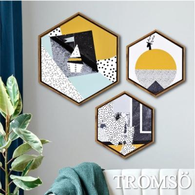 TROMSO北歐時代風尚六角有框畫-摩登北歐WA156(三幅一組)