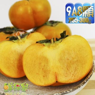 鮮採家 產地特選高山摩天嶺甜柿8顆禮盒(9A,單顆8-9兩)