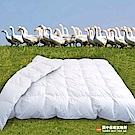 田中保暖 歐規EN98% 頂級匈牙利羽絨被 極度蓬鬆 純棉防絨布FP725+ 附羽絨進口證明 台灣製