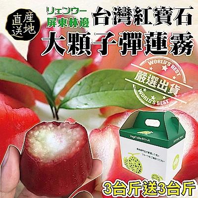 【天天果園】台灣紅寶石特大子彈蓮霧 x6斤