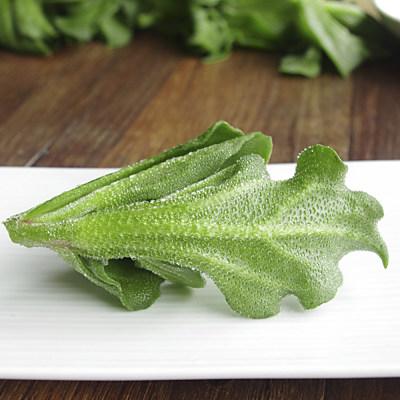 鮮採家 綠色溫室水晶冰菜5盒入(單盒120g±10%)
