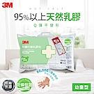3M 天然乳膠防蹣枕-附防蹣枕套(適用2~6歲幼童)