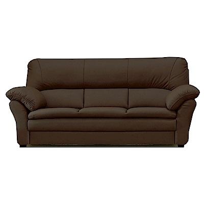 綠活居 艾利森時尚半牛皮革三人座沙發-206x88x99cm-免組