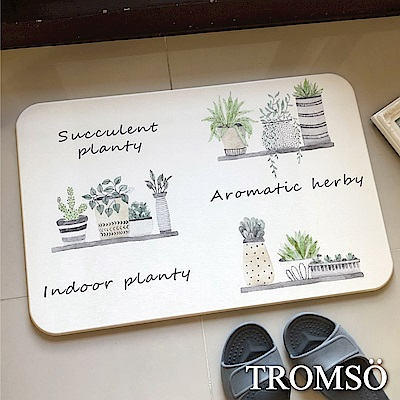 TROMSO珪藻土厚實吸水地墊-北歐小盆栽