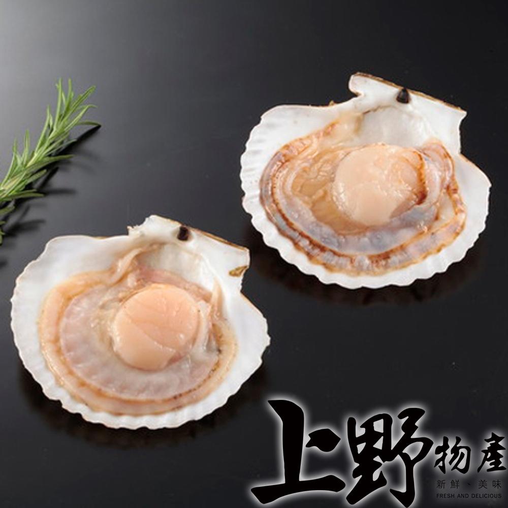 【上野物產】半殼扇貝(500g土10%/7-8個/包) x10包