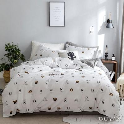 DUYAN竹漾-100%精梳棉/200織-單人三件式舖棉兩用被床包組-初見理查 台灣製